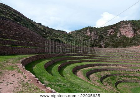Science of Incas in Agriculture