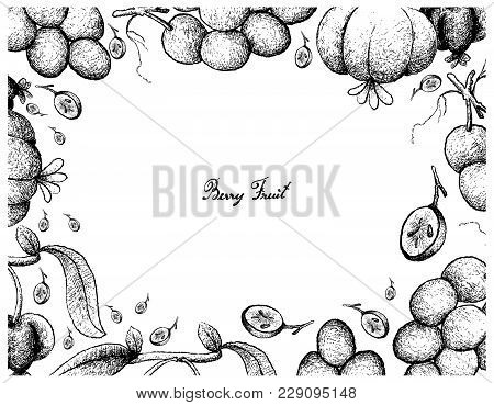 Berry Fruits, Illustration Frame Of Hand Drawn Sketch Bunch Of Fresh Juicy Red Grapes And Pitanga, S
