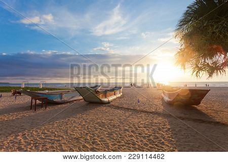 Ahungalla, Sri Lanka, Asia - Traditional Longboats Drying At Ahungalla Beach During Sunset