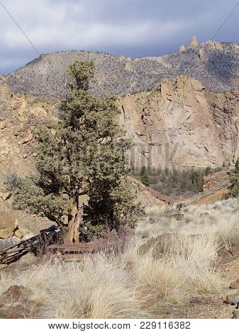 The Jagged Geology Of Smith Rock State Park In Central Oregon With Wild Grasses And Juniper Trees In