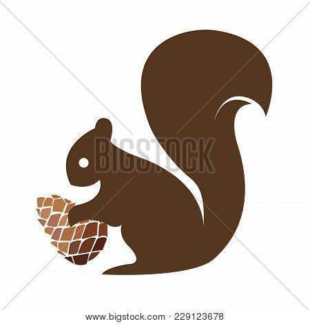 Squirrel With A Pine Cone. Vector Illustration