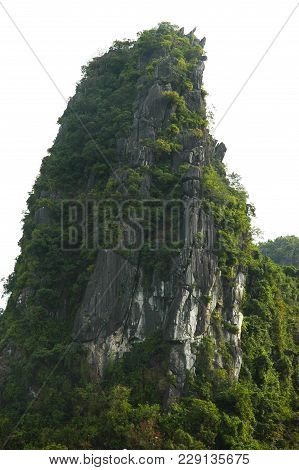 A Rock Rises Straight Above The Surrounding Hillside. It Is Covered With Trees, And A Forest Surroun