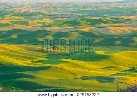 Sunrise On The Palouse Taken From Steptoe Butte, Washington.