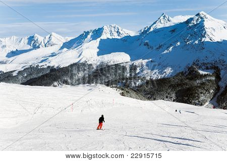 Skier in Swiss Alps