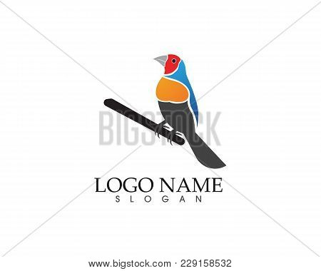 Bird Sign Abstract Template Icons App