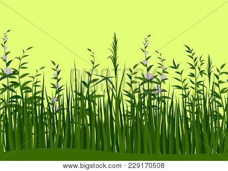 Seamless Horizontal Background, Nature, Landscape With Fresh Green Grass, Leaves And Lilac Flowers,