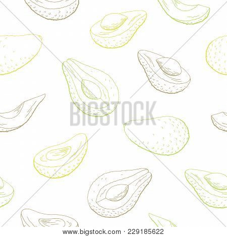 Avocado Fruit Graphic Color Seamless Pattern Sketch Illustration Vector
