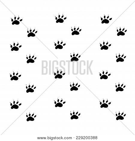 Prints Black Paws Of The Animal. Traces Of The Beast On A White Background Isolated.