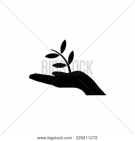 Plant A Tree Icon Isolated On White Background. Plant A Tree Icon Modern Symbol For Graphic And Web