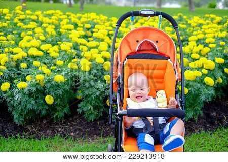 Hppy And Cute Asian Baby Toddler Boy Sitting On Stroller In Flower Garden At The Park With Copy Spac