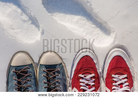 Sneakers In The Snow, Fashionable Bright Sneakers