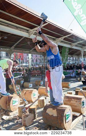 Wood Chopping In Bilbao