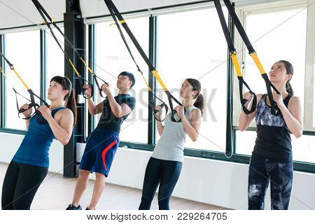 Trx Total Body Resistance Exercises Trainer