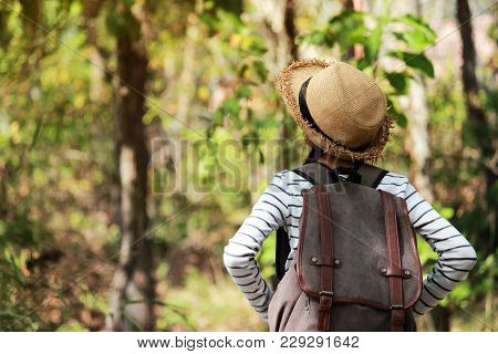 Asia ,young Woman Backpacker With Backpack Traveling Alone Forest, Relax Time On Holiday Concept Tra