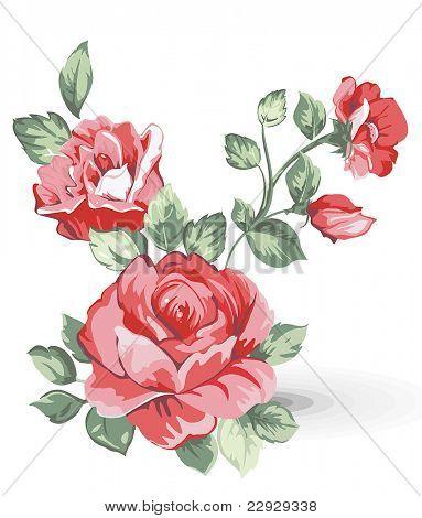 Illustration d'élégance avec bouquet de fleurs roses isolé sur fond blanc. Éléments de design de couleur.