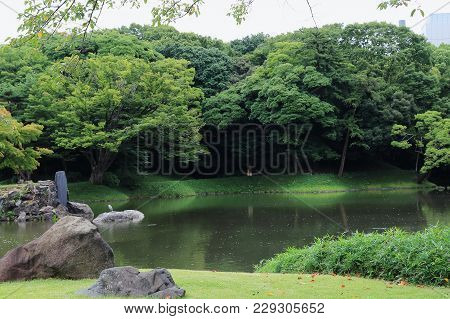 The Nature In Old Japanese Park Koishikawa-korakuen