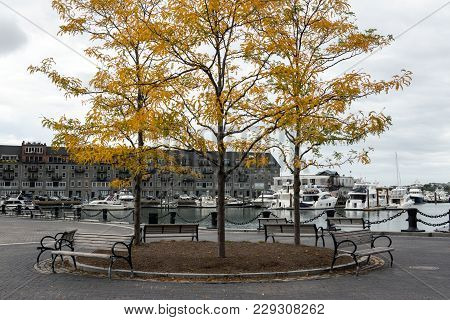 Boston Marina