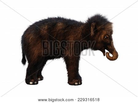 3d Rendering Of A Baby Woolly Mammoth Isolated On White Background