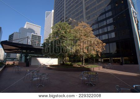 Willis Tower (formerly Sears Tower) Plaza With Trees And The Jackson Pavilion In The Background Unde