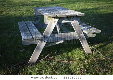 Worn Wooden Bench In The Shade Of A Tree
