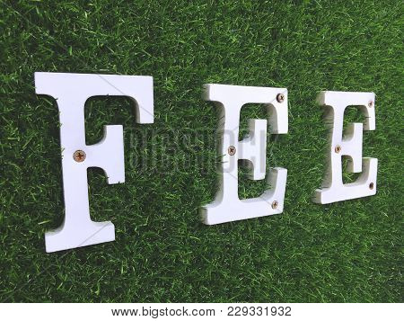 White Wooden Fee Text On Artificial Green Grass Wall