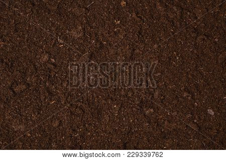 Fertile Soil Texture Background Seen From Above, Top View. Gardening Or Planting Concept With Copy S