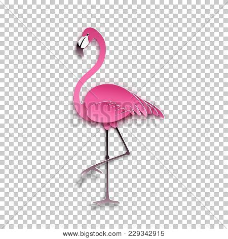 Pink Flamingo Standing On One Leg. African Exotic Bird, Cool Sticker For Birthday Cards, Party Invit