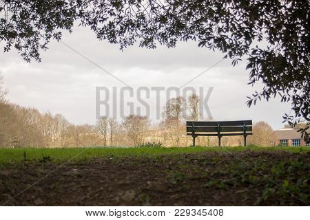 Empty Bench With No One In View.