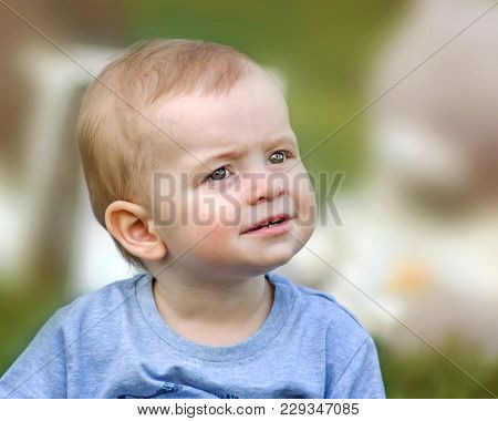 A Close-up Portrait Of A Curious Or Surprised Cute Baby Boy Sitting On Green Grass Outdoor At Summer