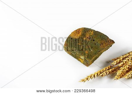 Half A Loaf Of Mouldy Rye Bread And Sprouts Of Wheat Isolated On White Background, Concept Of Inedib