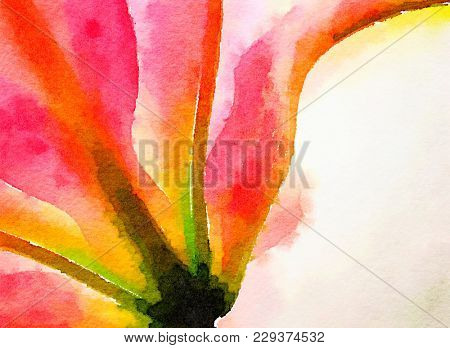 Nice original Watercolor painting of a Pink Lilly from Underside