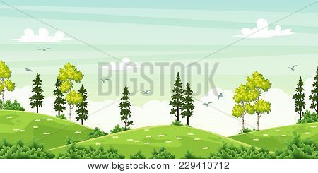 Summer Landscape With Trees On Meadow, Vector Illustration