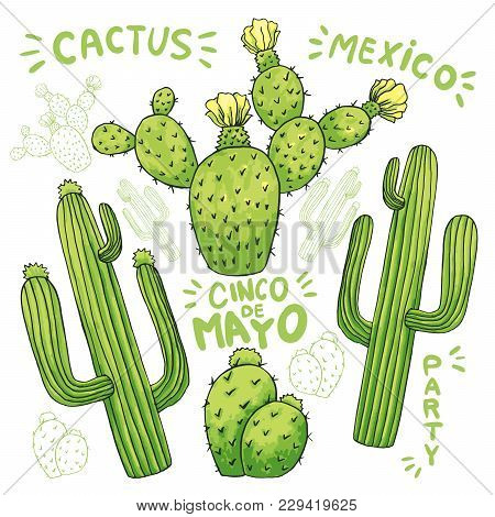 Set Of Mexican Cactus With Spines Or Thorns And Flowers As Banner For Cinco De Mayo Holiday Or Celeb