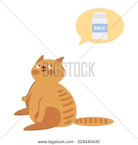 The Cat Is Sitting And Thinking About Milk. Obesicat, Probably Thinking About Food, With A Think Clo