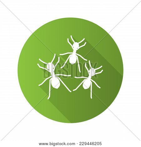 Ants Flat Design Long Shadow Glyph Icon. Vector Silhouette Illustration