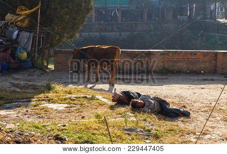 Kathmandu, Nepal - November 13, 2016: Two Homeless Nepalese Men Sleep On The Grass Near The Swayambh