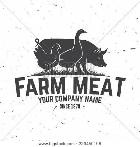 Farm Meat Badge Or Label. Vector Illustration. Vintage Typography Design With Chicken, Goose And Pig