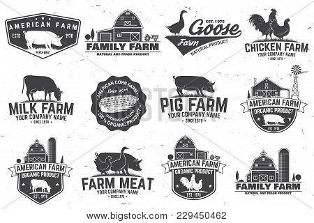 American Farm Badge Or Label. Vector Illustration. Vintage Typography Design With Chicken, Pig, Turk