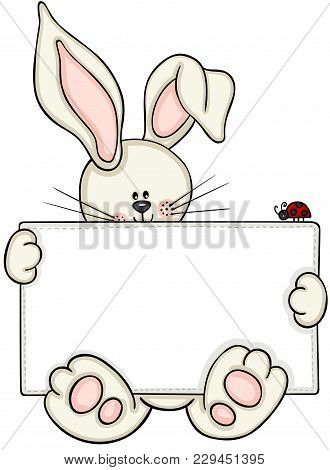 Scalable Vectorial Representing A Cute Bunny Holding Blank Label With Little Ladybug, Element For De