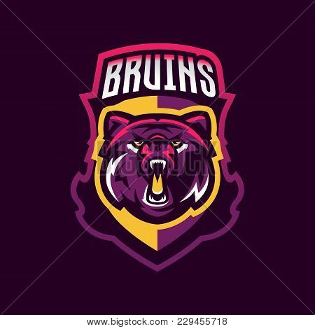 Colorful Logo Bear S Head. An Aggressive Beast, A Forest Predator, A Great Wild Animal. Lettering An