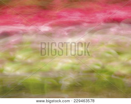 A Soft Focus Abstract Spring Colors Background Image.