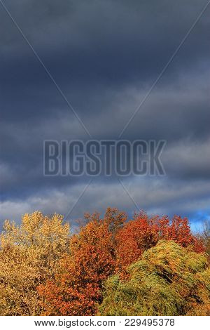 Trees And Storm Clouds Background - Heavy Dark Storm Clouds Over A Forest With The Colors Of Autumn.