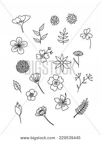 Floral In Doodle Style. Black And White Colors. Hand Drawn.