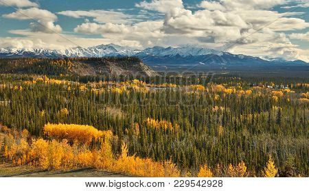 View Of Wrangell - St. Elias Mountains From Glenn Hwy In Alaska, Beatiful Colorful Autumn Time From