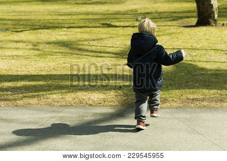 Runaway Toddler In Sunny Park. Kid Trying To Catch Wild Squirell.