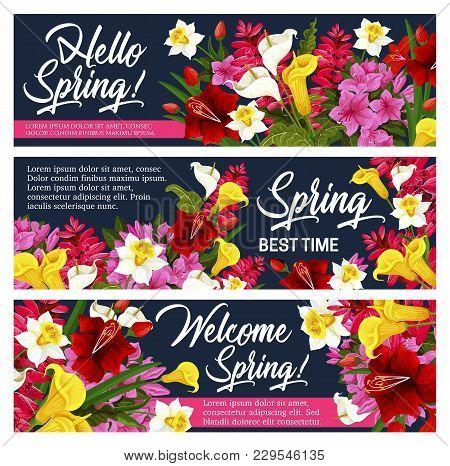 Spring Flower Greeting Banner For Springtime Holiday Celebration Design. Blooming Garden Plant Poste