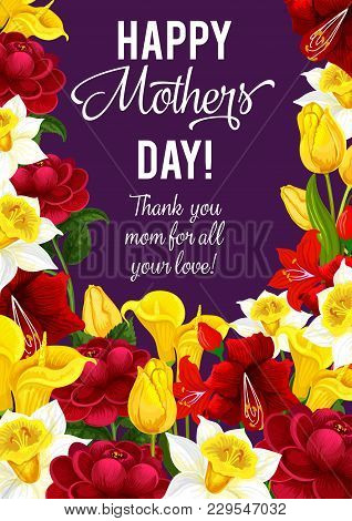 Happy Mother Day Greeting Banner With Frame Of Spring Flower. Daffodil, Tulip And Calla Lily, Peony