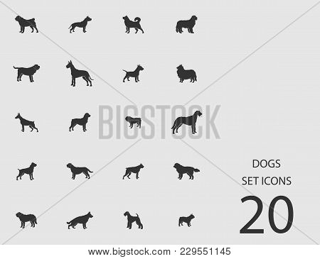 Dogs Set Of Flat Icons. Simple Vector Illustration