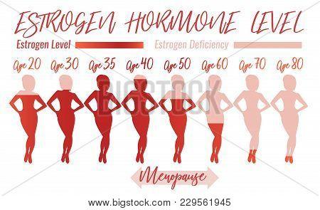 Estrogen Hormone Level. Beautiful Medical Vector Illustration In Pink Colours. Scientific, Education