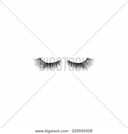 Eye Lashes Vector Icon. Lashes Vector Black On White Background